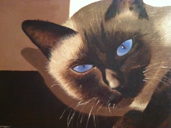 http://sharonfurmanart.com/files/gimgs/th-2_Siamese cat 1.jpg